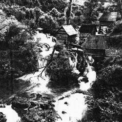 Reference reproduction, Bosnian Mills.