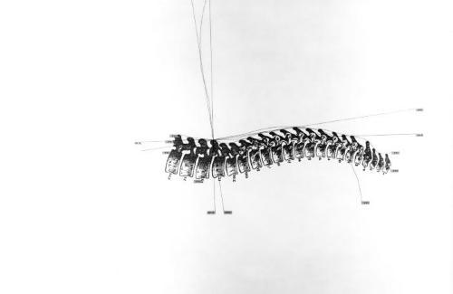 Spine.