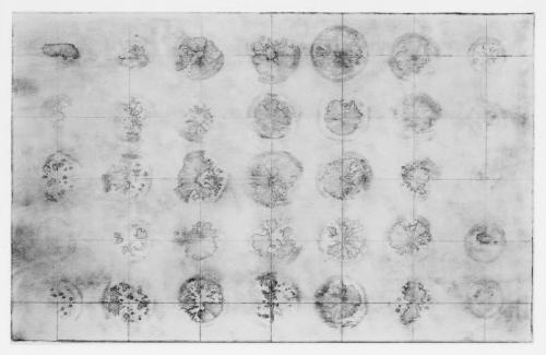 Lemon etching / plans.